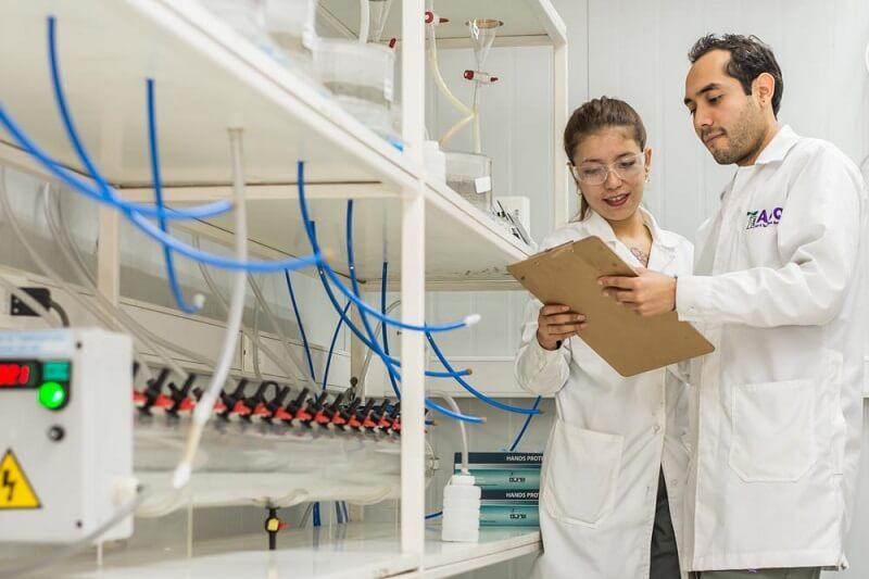 Ensayo de generacion neta de acido o test NAG