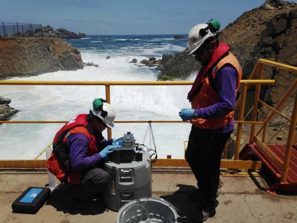 Trabajos ambientales en central eléctrica de Guacolda
