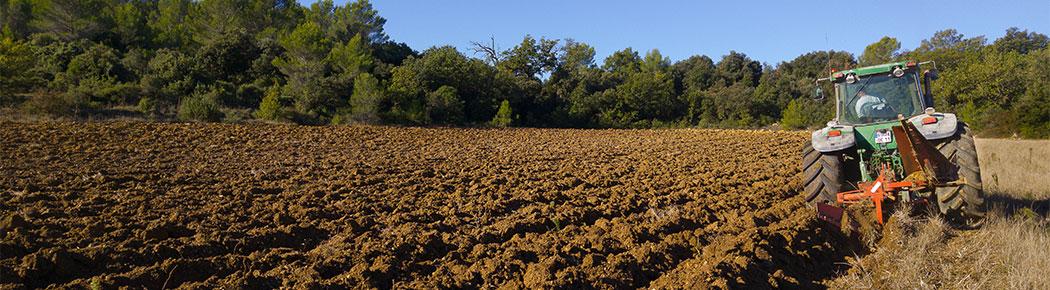 Suelo agrícola analizado por nosotros