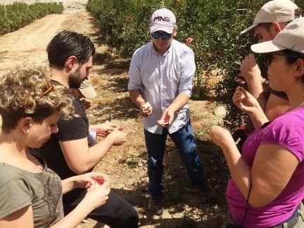 Asesores agrícolas italianos visitan AGQ Labs Chile