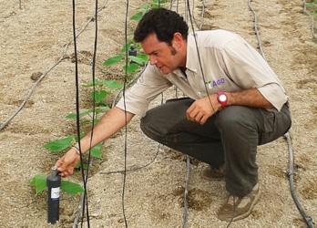 Seguimiento y Control Nutricional de cultivos La clave para aumentar la rentabilidad de su cultivo